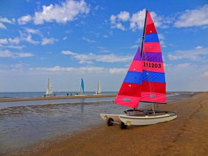 sailing-catamaran-567682_640